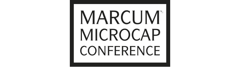 Highpower International to Present at the 2017 Marcum Microcap Conference